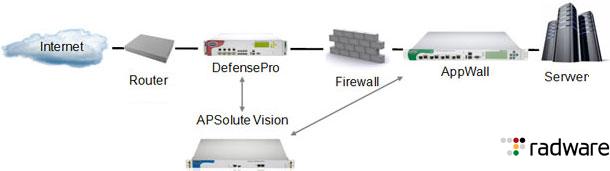 Radware AMS schemat