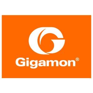 Logo Gigamon